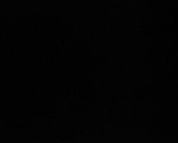 черная махровая ткань