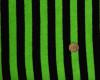 салатовая односторонняя махровая ткань